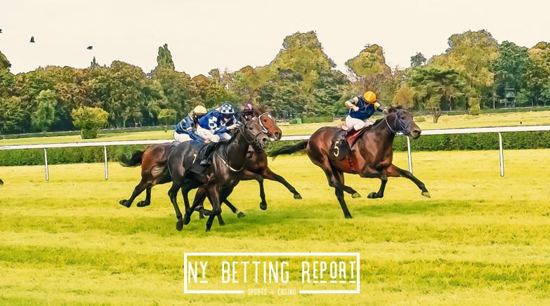 horsesny1