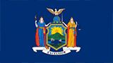 New York Flag Small